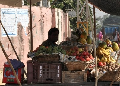 Fruit Vendor, Udaipur