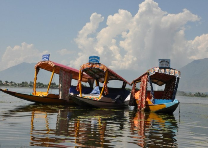 Shikhara boats on Dal Lake, Srinagar
