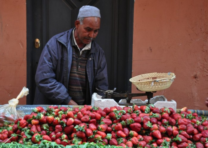 Strawberry Seller at Souk