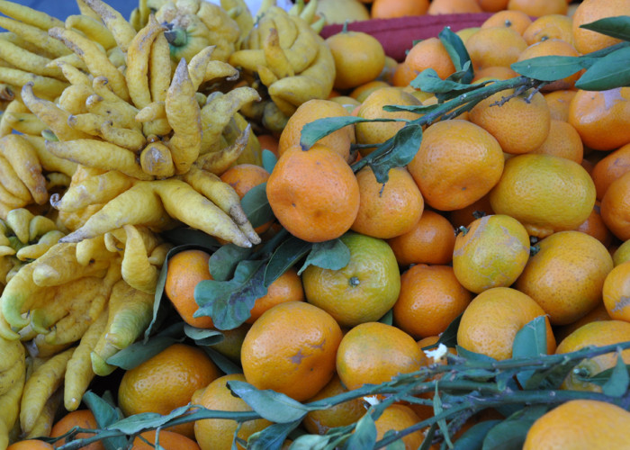Bhudda Hands & Tangerines, Ferry Building Farmers Market, San Francisco