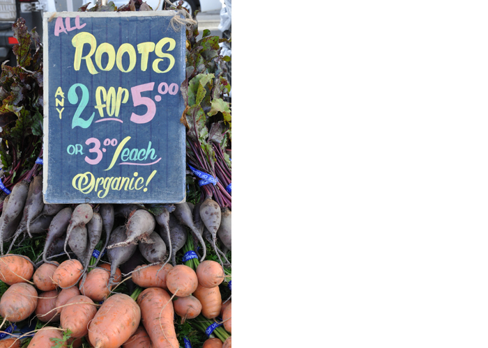 Roots, San Francisco Farmers Market, November 2015